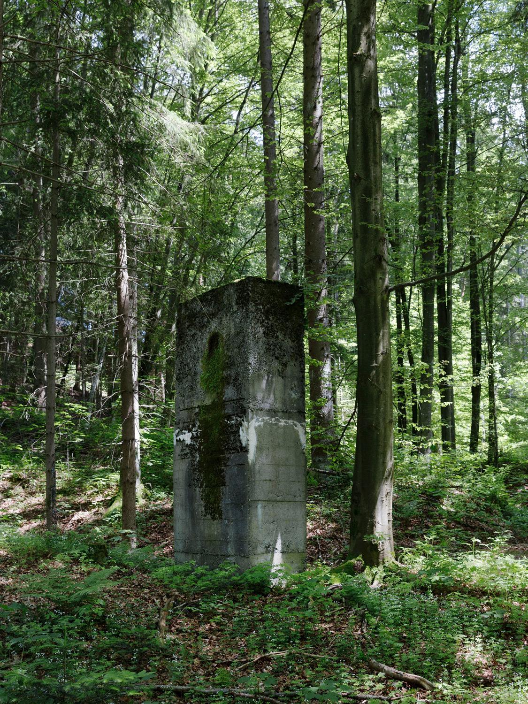 Eckerwald