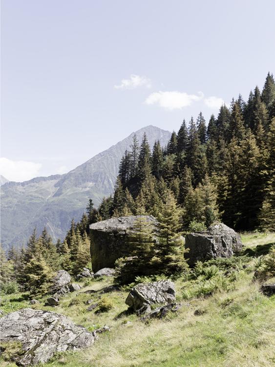 Gurtnellen, Uri / Schweiz
